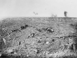 """'I Came To Fight, Not Sling Mud About:' Work Parties On The Somme As An Indication Of Poor Command Practices"" by Bill Stewart"