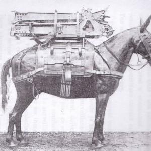 art-horse