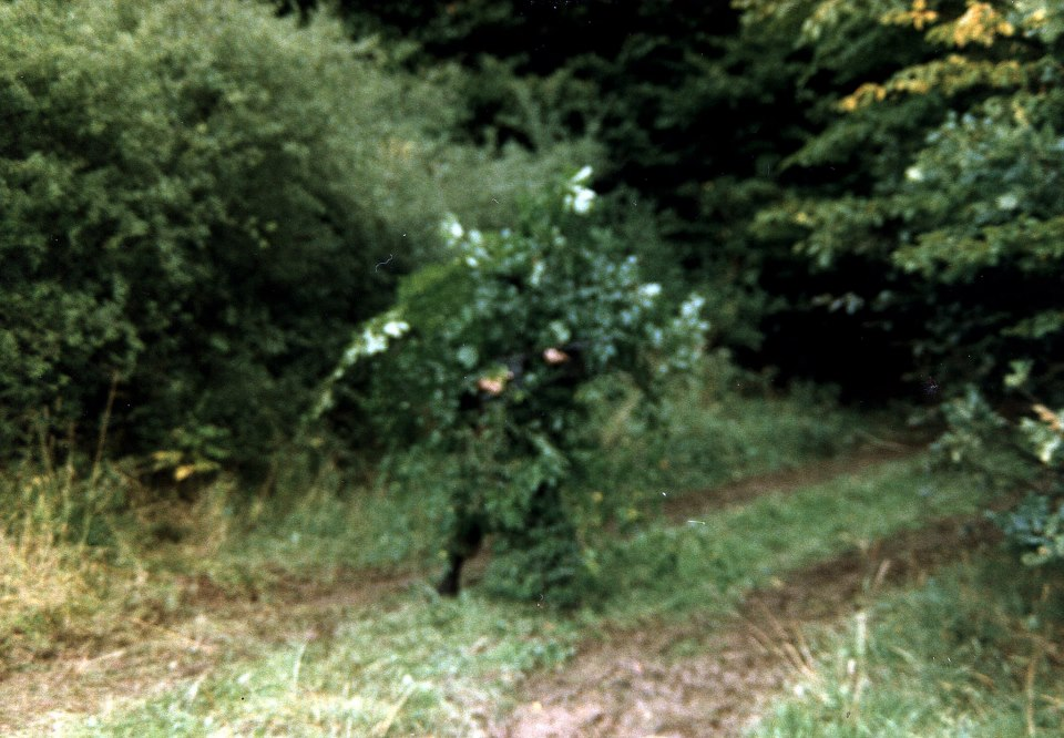 A Canadian soldier in camouflage made of fresh cut bushes getting ready to set up an ambush (Photo by Brian Watters).